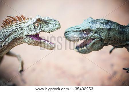 a tyrannosaurus and an allosaurus toy on rock