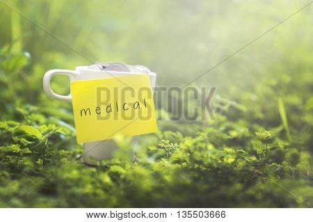 Coins in glass money mug with medical label blurred grass view at background. Financial concept.