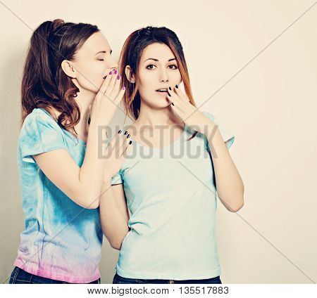 Gossip. Woman Whispers to the Friend Secrets. Cute Girls Talking