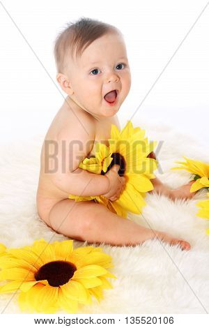 little childe sitting on the fur in a full-length with sunflowers in his hands, white background isolated