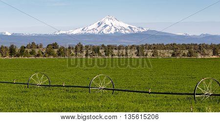 Mount Jefferson Stands Majestic Oregon Cascade Mountain Range