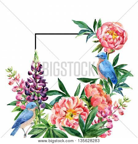Watercolor garden flowers card. Lupin peony flowers bluebird couple with black square frame on white background. Hand painted illustration with paper texture