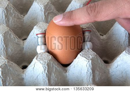 tend egg by music and hand in the Egg carton tray