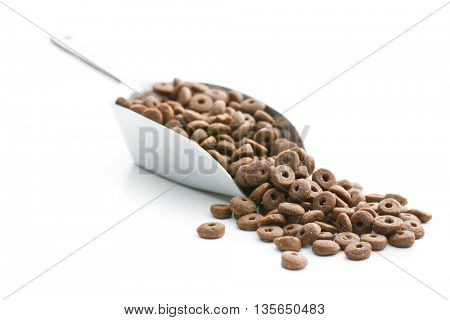 Dry kibble dog food in metal scoop  isolated on white background.
