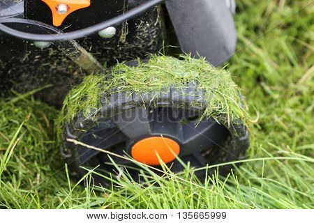 picture of a Wheel of a lawnmower after mowing grass