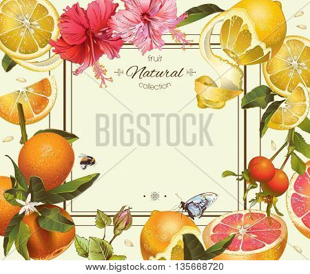 Vector vintage citrus frame with lemon, hibiscus and rose hip.Design for tea, juice, natural cosmetics, baking, candy and sweets with citrus filling, grocery, health care products. With place for text.