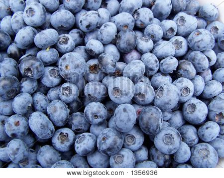 Blueberries200607 028