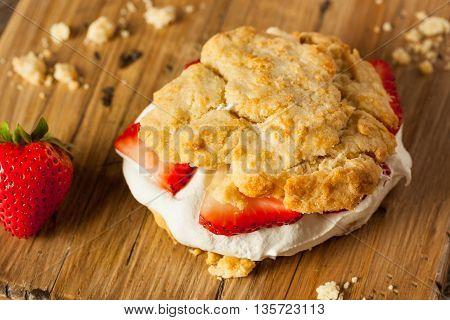 Homemade Strawberry Shortcake With Whipped Cream