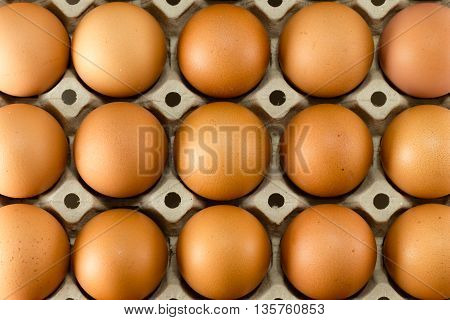 Eggs In Carton Tray