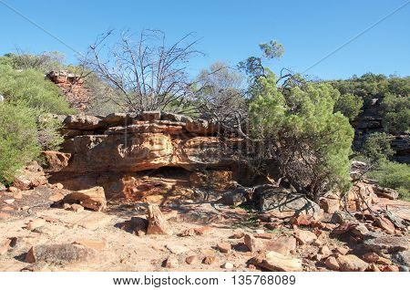 Sandstone rock and native flora in the rugged bushland at Z-bend gorge in the Kalbarri National Park in Western Australia.