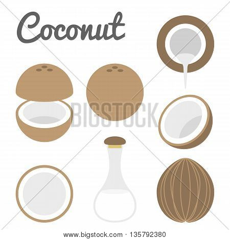 Vector coconut with coconut milk set icon flat style