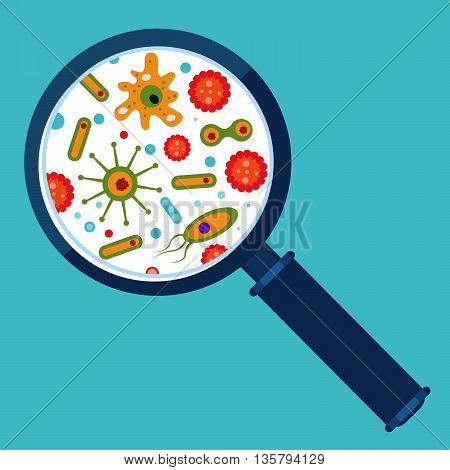 Magnifier And Bacteria
