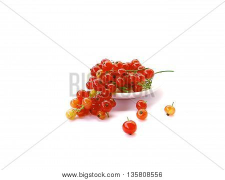 beautiful rich red red currant on a white background photo for micro-stock
