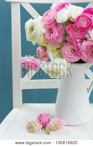 Pink and white ranunculus flowers in vase on chair with blue background