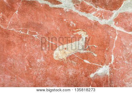 Fresco In Villa Oplontis