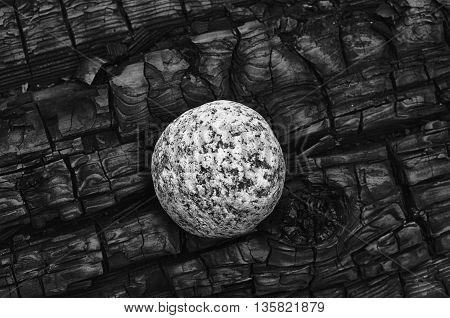 One white speckled granite stone contrasts against the dark black burn pattern of a log charred by fire.