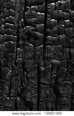 The rougth pattern of dark cracks and highlights from the charred area of a burnt log results in a pleasing natural abstract texture.