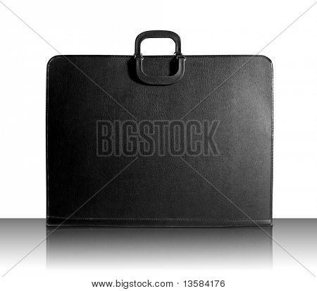 Designer Portfolio Bag