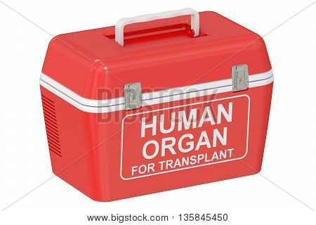 Portable fridge for transporting donor organs 3D rendering isolated on white background