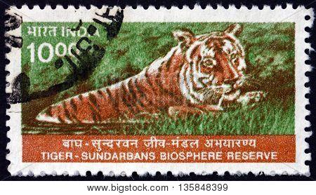 INDIA - CIRCA 2000: a stamp printed in India shows Tiger Panthera Tigris Sundarbans National Biosphere Reserve circa 2000