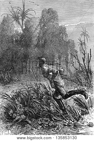 Soldier explorer running through a jungle in South Africa. A demi depouille. From Jules Verne 3 Russians and 3 English Book, vintage engraving, 1871.