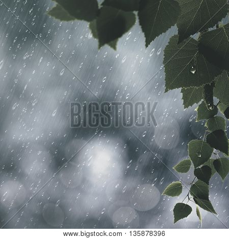 Summer rain abstract seasonal backgrounds for your design