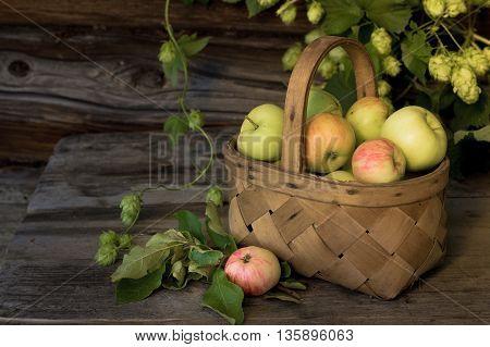 Basket full of apples hops on a wooden background