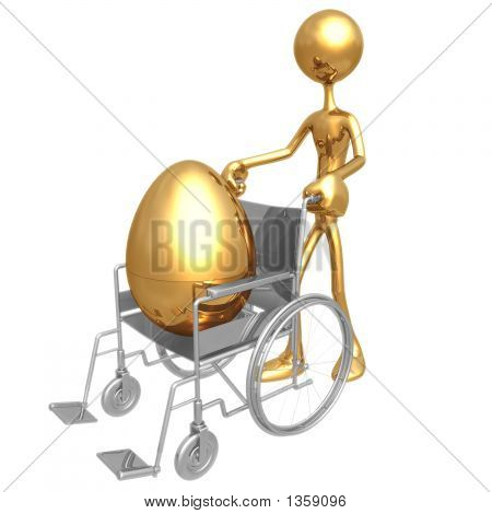 Injured Gold Nest Egg In A Wheelchair