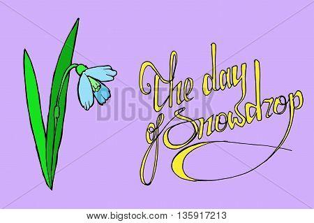 World snowdrop day. Hand drawn vector stock illustration.