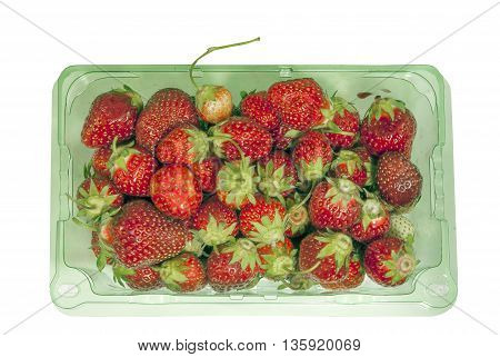 Green plastic container filled with fresh strawberries