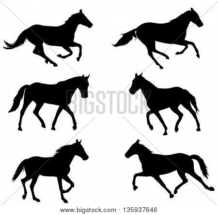 horses silhouettes collection - vector