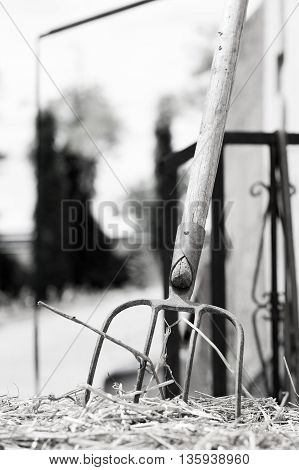 Pitchfork stuck in the straw in an old farmhouse, black and white