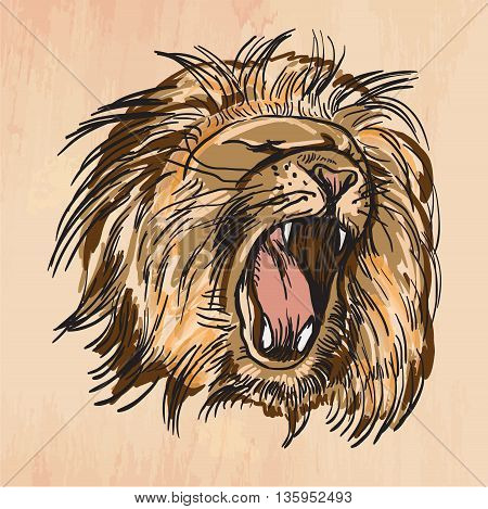 An hand drawn retro vector illustration colored line art. Freehand sketch of LION head. Hand drawing is editable in layers and groups. Background is isolated. Vintage processing.
