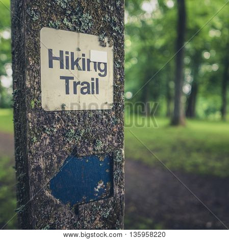 Rustic Hiking Trail Sign On A Wooden Post In A Forest