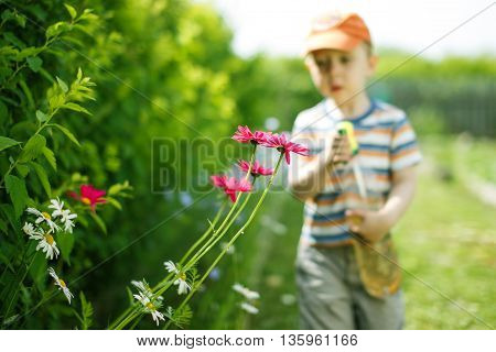 kid in the garden helps to spray plants. boy holds in hands bottle sprayer to watering the flowers from pests. selective focus