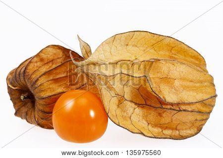 Fruits Physalis ( Physalis peruviana) isolated on white background close up.