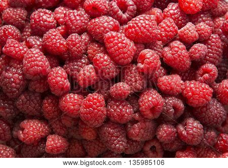 Background of red ripe raspberries. Stock Photo.