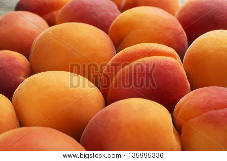 Fresh colorful apricot fruits background close up