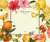 Vector vintage citrus frame with lemon, hibiscus and rose hip.Design for tea, juice, natural cosmetics, baking, candy and sweets with citrus filling, grocery, health care products. With place for text. poster