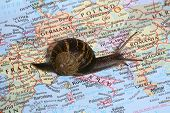 A snail crawling over a map, conceptually traveling through Europe poster