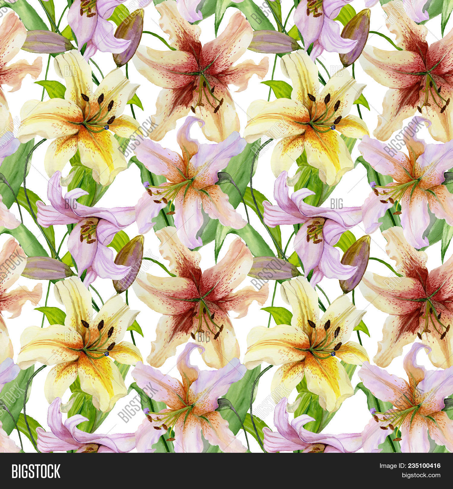 Beautiful lily flowers image photo free trial bigstock beautiful lily flowers with leaves on white background seamless floral pattern watercolor painting izmirmasajfo