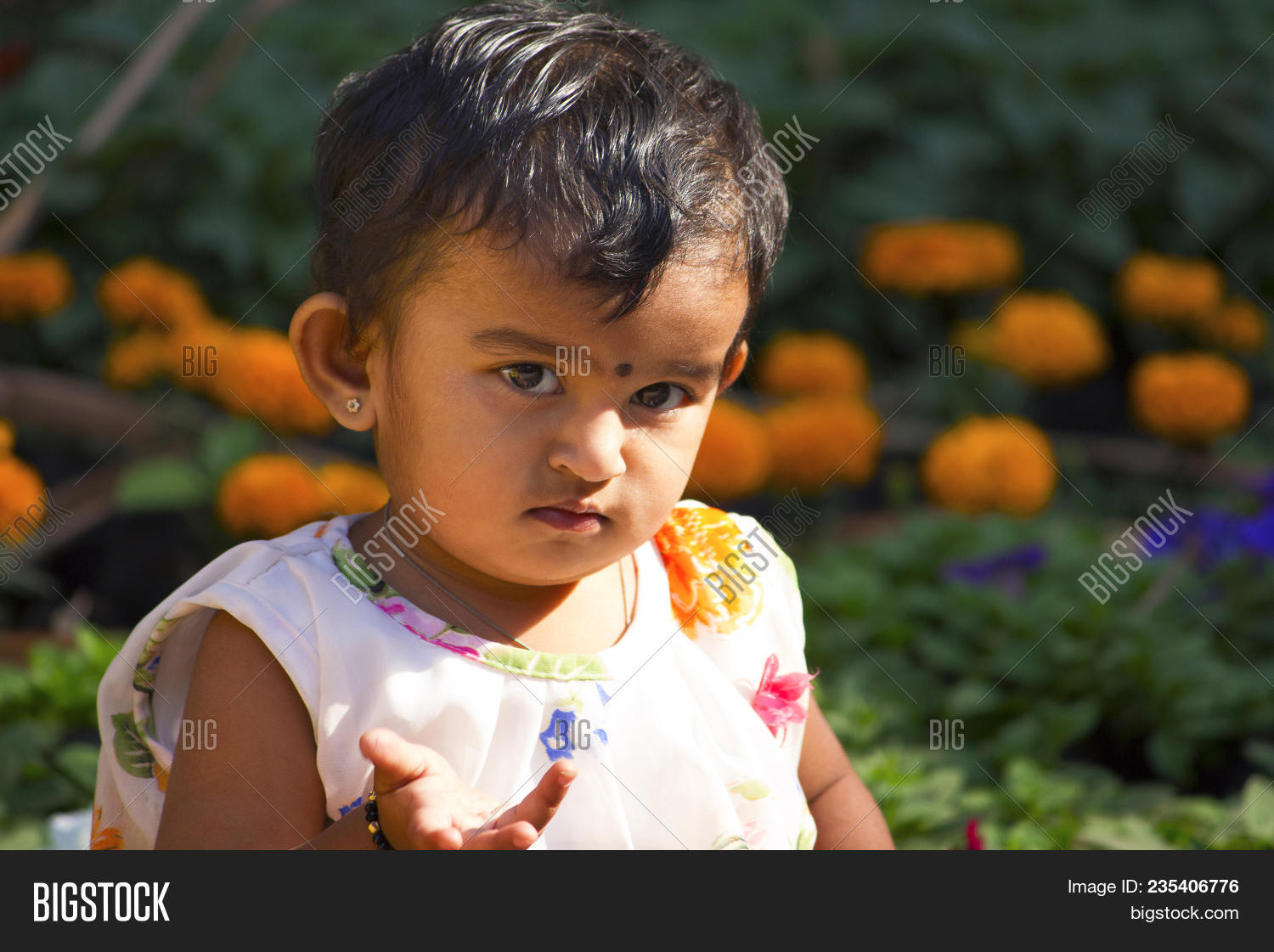 Indian Little Girl Image & Photo (Free Trial)   Bigstock