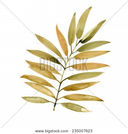 Ocher Watercolor Leaf. Hand Drawn Watercolor Element. Nature Art. Watercolor Palm Leaf Isolated On W