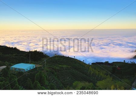 Beautiful Sunset Landscape With Ginkgo Trees,tea Plantations And Clouds Over The Mountains