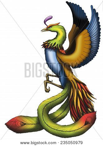 Illustration Of A Chinese Phoenix Isolated With White Background