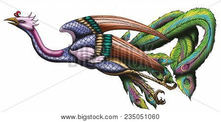 Chinese Phoenix Illustration Isolated With White Background