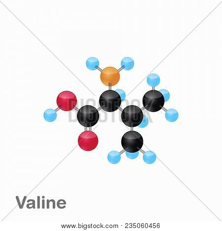 Molecule Of Valine, Val, An Amino Acid Used In The Biosynthesis Of Proteins, Vector Illustration