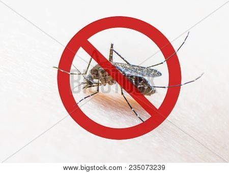 World Malaria Day With No Mosquito Sign For Prevention Of Virus Carrier Insect Spreading Aedes Aegyp