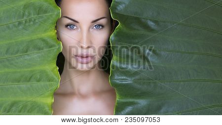Beautiful Woman Face With Natural Nude Make-up On A Tropical Leaf Background. Healthy Life. Sexy Bea