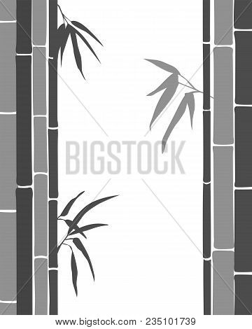 Bamboo. Black And Grey Silhouette Of Bamboo On A White Background. Vector Illustration.